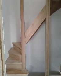 eiken-keepboom-trappen-den-haag.jpg