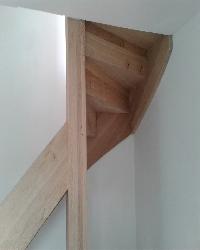 eiken-keepboom-trappen-den-haag3.jpg