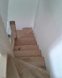 eiken-keepboom-trappen-den-haag4.jpg